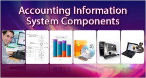 Accounting-Information-System-Components