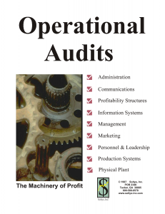 audit-operational-22710117