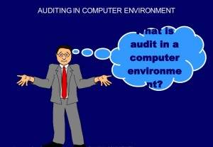 auditing-in-computer-environment