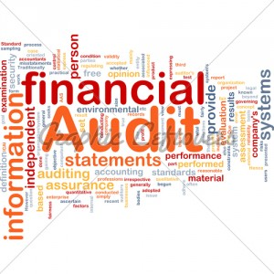 financial-audit-url