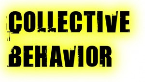 collective-behavior